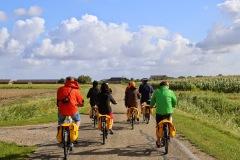 Cycling/fietsen