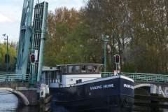 Sailing Home 11
